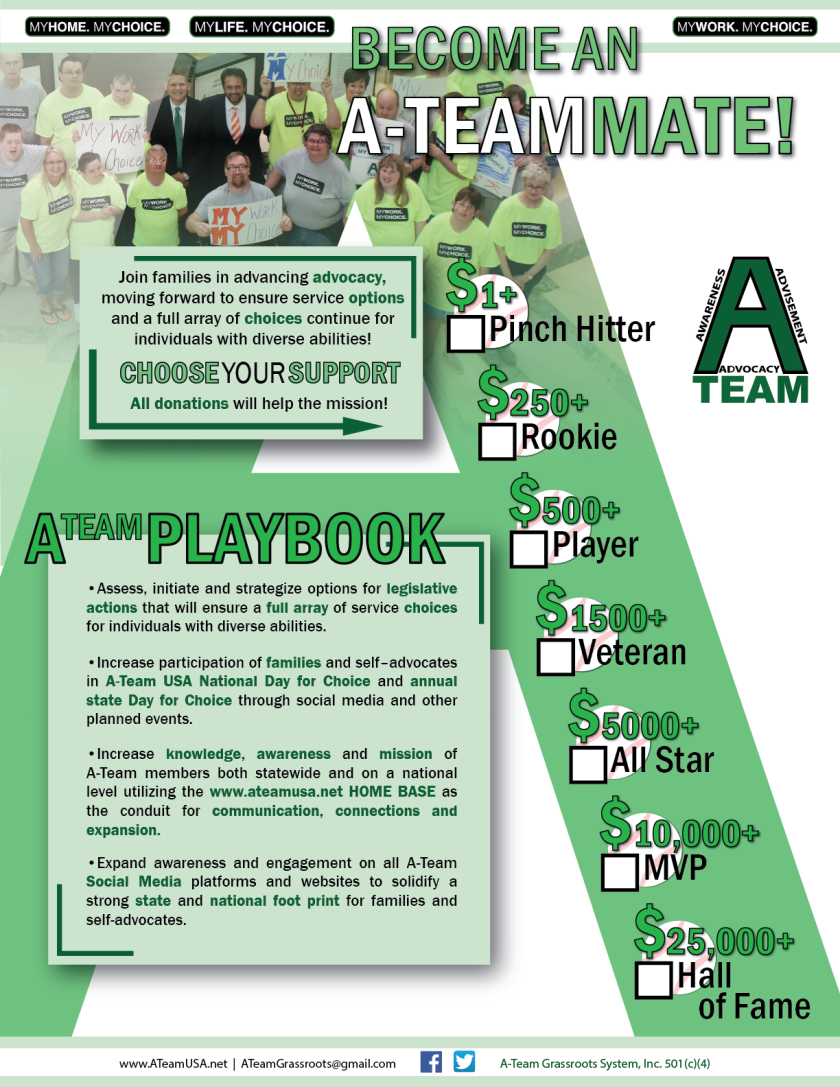 A-Teammate Flyer draft15 A